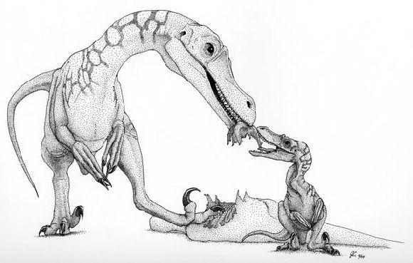 File:Velociraptor 02.jpg