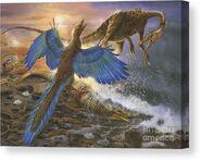 Archaeopteryx-defending-its-prey-jan-sovak-canvas-print
