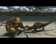 Raptorslaststand