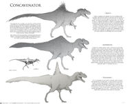 Joshua-dunlop-concaveentor-sketches-small