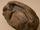 Antarcticoolithus