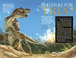 Archeoraptor NG article