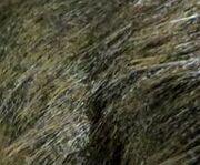 Feathersyutyrannus