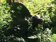 Edaphosaurus-boraszoo