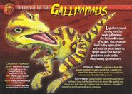 Gallimimus front
