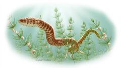 Parviraptor.jpg