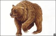 Cave-bear-324x205