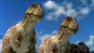 Albertosauruspp