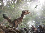 Sciurumimus 20120929 4 ca91
