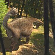 Saltasaurus (DP)