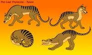 The last thylacine tyson by eddybite87 dbjsvuu