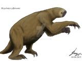 Megalonyx