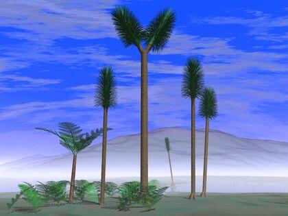 Sigillaria tree