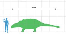 220px-Ankylosaurus scale