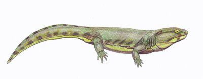 Karpinskiosaurus1DB