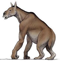 Rarezas-extintas 4 1277597.jpg