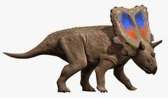 Mercuriceratops NT.jpg