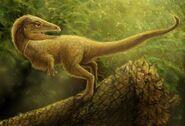Sciurumimus albersdoerferi by viergacht-d56x7oj 9726