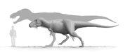 Tarbosaurus Steveoc86