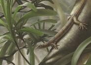 Ascendonanus nestleri-novataxa 2018-Spindler Werneburg Schneider et-al--MuseumFurNaturkundeChemnitz