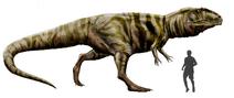 Restoration of Giganotosaurus with size comparison-1
