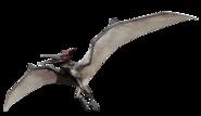 Pteranodon Jurassic World