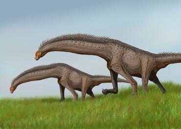 Isisaurus DB