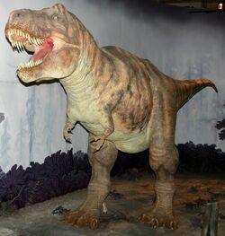 01Tyrannosaurus