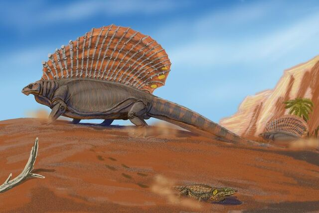 File:Edaphosaurus pogonias.jpg