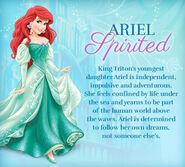 Ariel profile