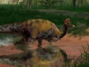 CoryDinoPed