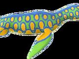 Поликотилус