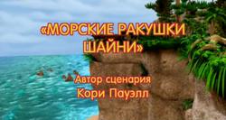 Морские ракушки Шайни