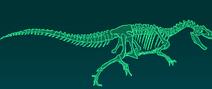 Аллозавр скелет