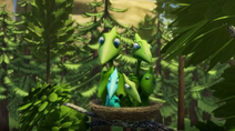 Nest Swamp