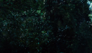 Indominus viidakossa