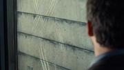 Indominuksen raapimajäljet muurissa