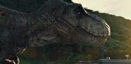 Tyrannosaurus rexyn arvet taisteltuaan indominus rexiä vastaan
