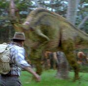 Jurassic Park parasaurolophus walkeri neljäs variaatio