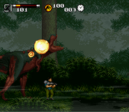 SNES--Jurassic Park Part 2 The Chaos Continues May10 12 01 24