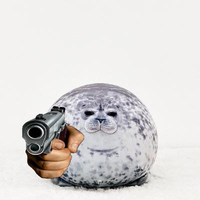 Seal gun