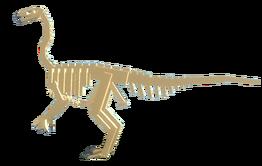 Fossil Ornitho