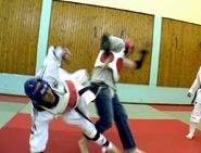 Taekwondont2
