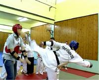 Taekwondont4