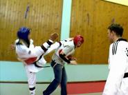 Taekwondont3