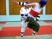 Taekwondont6
