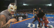 Mexican wrestling5