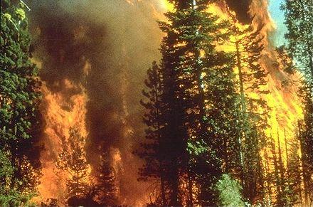 File:440px-Wildfire in California.jpg