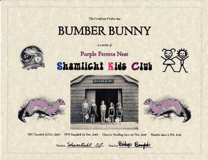 SKC PFN Bumber Bunny nestler certificate md