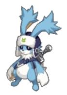 D5-rabbit-3